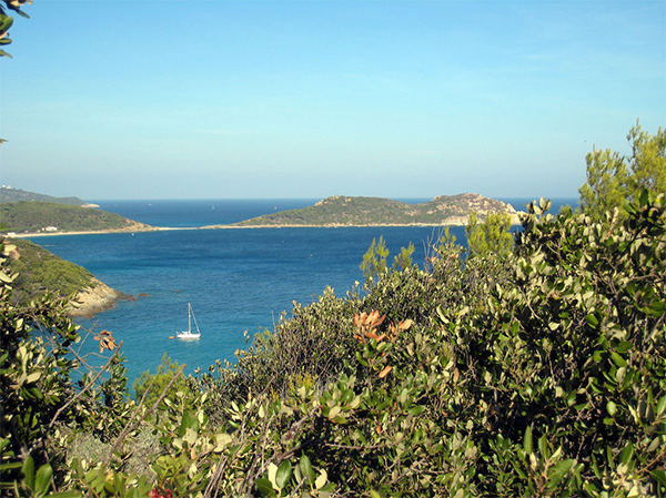 saint-tropez-littoral-nature